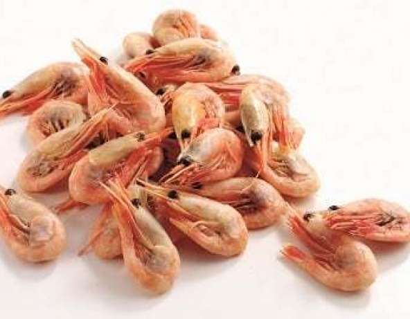 FISH SHRIMPS MAX 1 KG