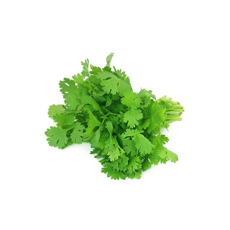 CORIANDER LEAVES (كزبرة)