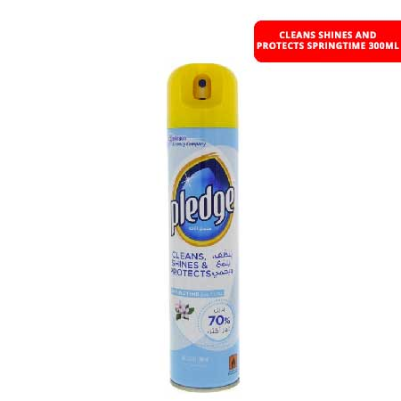 CLEANS SHINES AND PROTECTS SPRINGTIME 300ML